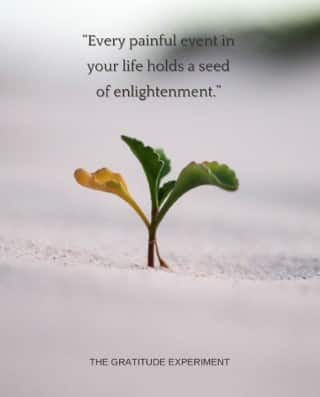 Every painful event in your life holds a seed of enlightenment